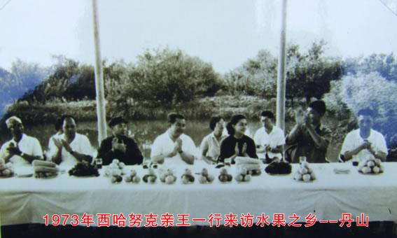 青岛丹山社区-简介-二十世纪七十年代